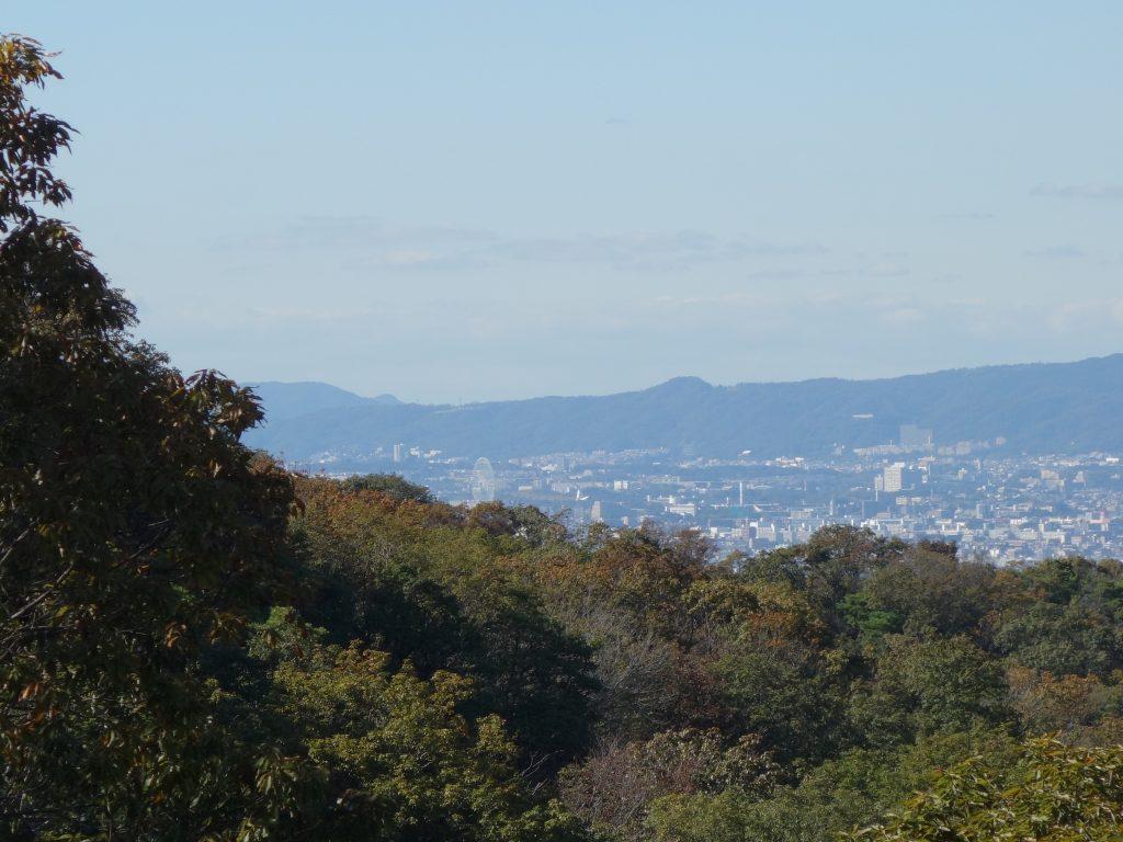 hoshida11